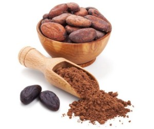 Cacao_Powder-Superfood-465x390px